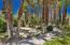 360 Cabrillo Road, 127, Palm Springs, CA 92262