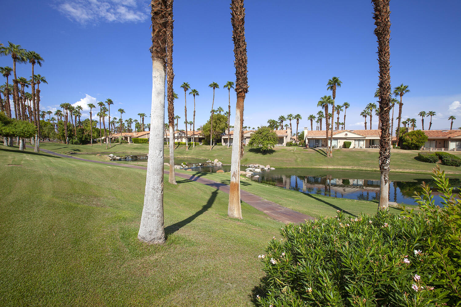 A 30k price drop?  Yes... who will be the lucky Buyer!  This spacious Willow floor plan is just what you've been waiting for!  It has the largest living space available in Palm Valley Country Club, all on a single level.  This lovely 3 bedroom/3.5 bath home has a formal dining room, large living room with fireplace and private courtyard off the master suite.  Amazing natural lighting with plantation shutters and high ceilings.  Delightful backyard with extended patio and BBQ island hooked up to gas line, perfect for outdoor dining with friends and family.  Attached golf cart garage with separate entrance and golf cart included.    This magnificent home sits slightly elevated with a gorgeous lake, mountain and golf course view! Perfect for your new desert home or weekend getaway. It is also a very short walking distance to the club house and all the amenities offered at Palm Valley Country Club. Not only that, your community swimming pool is right across the street. The previous owners took great pride in this home.   Palm Valley Country Club has a 100,000+ sq. ft. clubhouse with a spa, state of the art fitness center, year round dining options, a bar, tennis and pickleball courts, two Ted Robinson designed championship golf courses, 46 swimming pools and spas, an enormous clubhouse with restaurants and a bar, a fitness center and so much more. Come check out one of the premier country clubs in the valley, and make this beautiful property your next home!