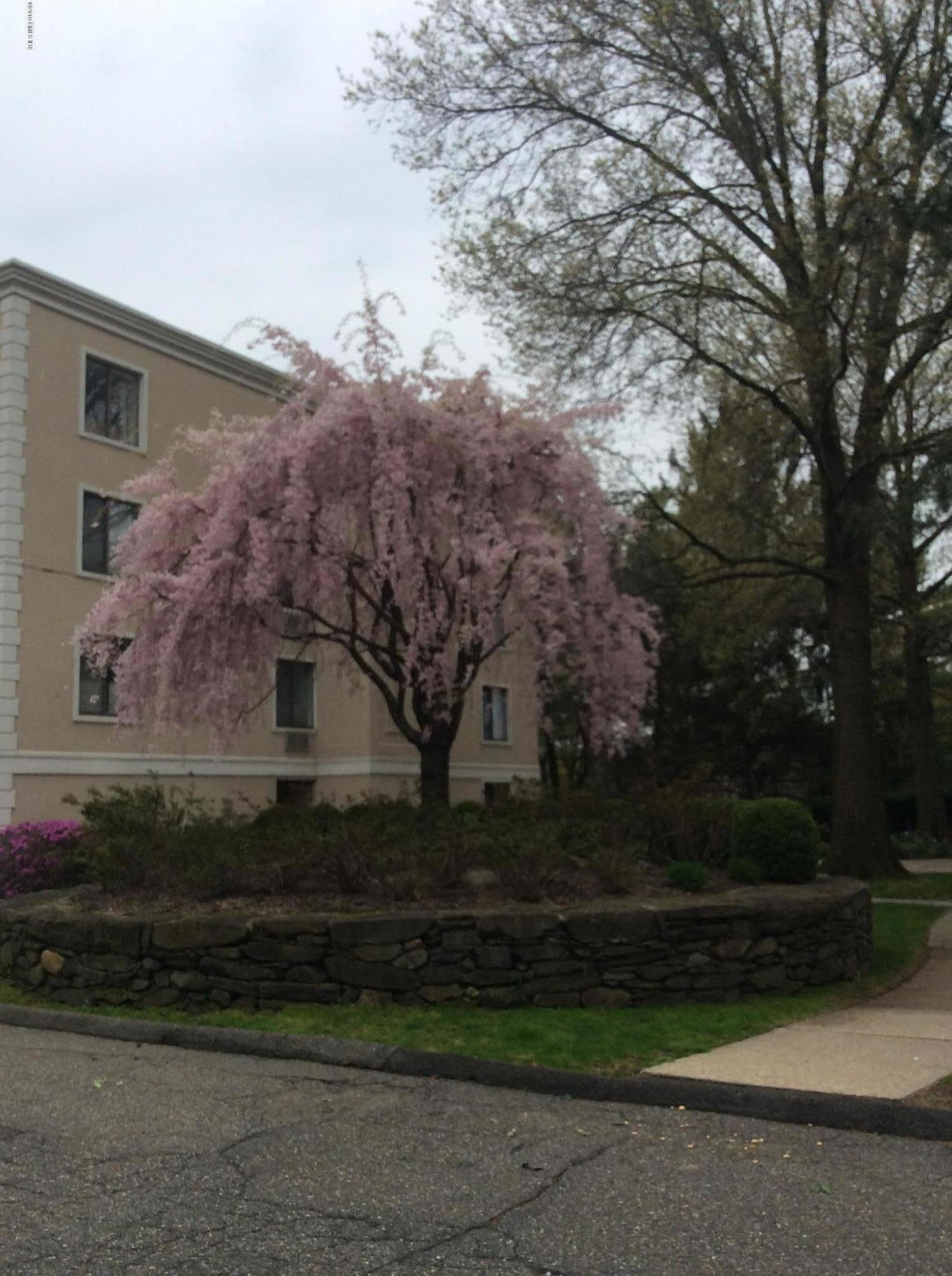 1535 E Putnam Avenue, #201, Old Greenwich, CT 06870