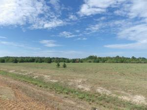 South Lehmberg Rd, Columbus, MS 39702