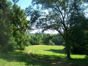Artesia Road, Starkville, MS 39759