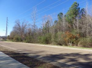 0 Lynn Lane (5.3 acres), Starkville, MS 39759
