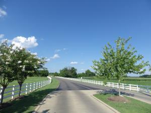 2.96 acres, Links Lane, Starkville, MS 39759