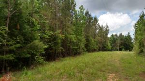 Reed Rd., Mathiston, MS 39752