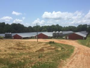 11211 Co Rd 361, Union, MS 39365