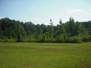 Stella Ln, Steens, MS 39766