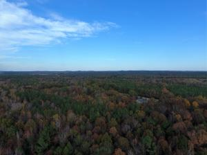 MS HWY 404 (80 acres), Bellefontaine, MS 39737