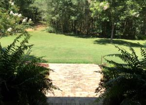 06 - Front Yard, From Porch