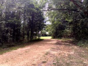 44 - Driveway, toward house