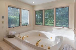 35 master bath tub 2
