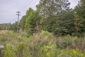 BOYD RD (9.7 acres), Starkville, MS 39759