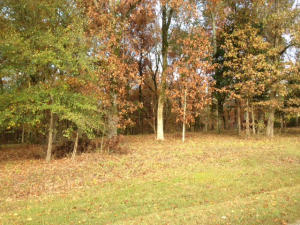 BROWNING CREEK (LOT 114), Starkville, MS 39759