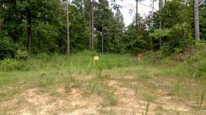 Choctaw Landing Rd (2)