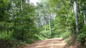 Choctaw Landing Rd (3)