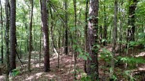 Choctaw Landing Rd (8)