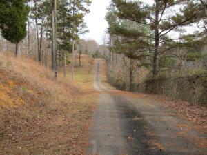Driveway (3)