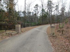 Driveway (4)