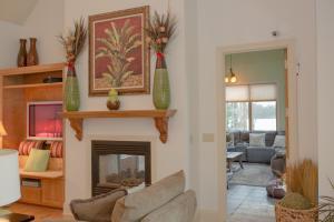 See-Thru Fireplace