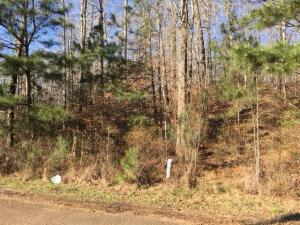 Greenbriar (1.04 acre lot), Columbus, MS 39705