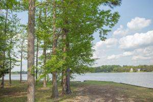 Wooded Lot w/ Lake Views