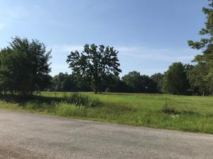 Hwy 47/Pea Ridge Rd., West Point, MS 39773