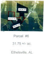 Ethelsville Parcel #6, Ethelsville, AL 35461