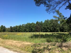 CR 300, Big Creek, MS 38914