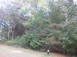 Lot 111 Waverly Drive, West Point, MS 39773