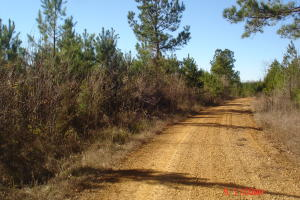 Wimberly Rd, Dekalb, MS 39328
