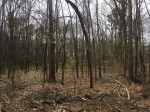 Kings Arms Rd, Lot 86, Starkville, MS 39759