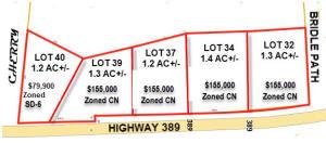 Lot 39 N Jackson Street, Starkville, MS 39759
