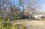 405 Myrtle St, Starkville, MS 39759