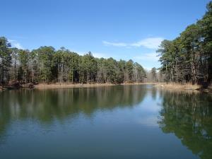 5+/- Acre Lake