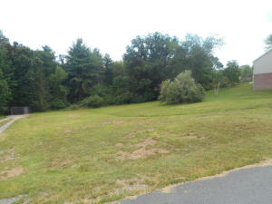 LOT 48 LAMPLIGHTER DRIVE, LAMPLIGHTER VALLEY, LEWISBURG, WV 24901
