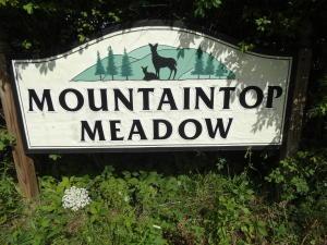 LOT 14 MOUNTAINTOP MEADOW LANE, FRANKFORD, WV 24938