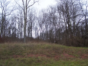 LOT #27 LAMPLIGHTER DRIVE, LEWISBURG, WV 24901