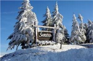 310 B Snow Crest Complex, Snowshoe, Wv 26209