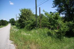 Lots 2 & 3 Main Street, Lead Hill, AR 72644