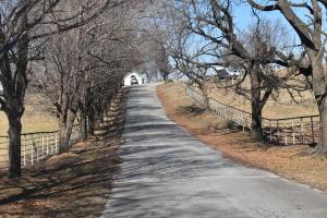 2602 Edwards Farm Drive, Harrison, AR 72601