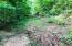 Terrapin Road, Harrison, AR 72601
