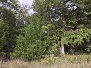 Lots 17-18 Horseshoe Bend Road, Lead Hill, AR 72644