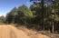 Hammerschmidt Road, Lead Hill, AR 72644