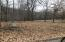 Lot 21A Dogwood Drive, Omaha, AR 72662