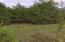 Lots 17-18 Horseshoe Bend Road, Lead Hill, AR 72644