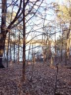 Horseshoe Bend Road, Lead Hill, AR 72644