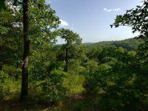 TBD Greers Ferry Road, Branson, MO 65616