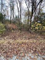 Lot 4/Blk5 Sunset Dr, Diamond City, AR 72630