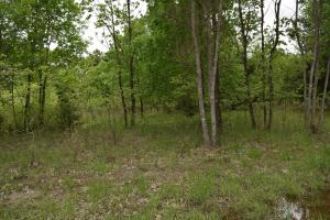 Lot 33 Belle Cove Road, Mountain Home, AR 72653