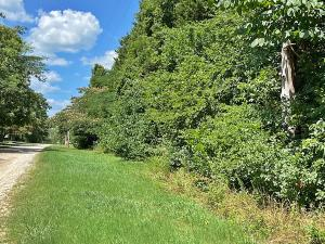 Mockingbird Trail, Diamond City, AR 72630