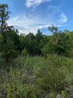 Horseshoe Bend Road, Lead Hill, AR 72644
